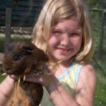 'Dierenvallei goed voor kinderen'